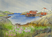 Newfoundland Cove - Watercolour - 11x15